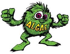 Algae Monster